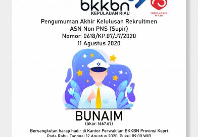 Pengumuman Rekruitmen ASN Non PNS (Supir)